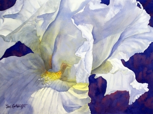 Joe Cartwright - White Iris