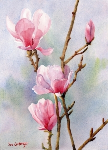 Joe Cartwright - Pink Magnolias